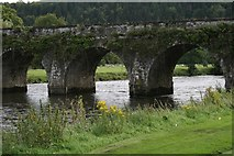 S6337 : Bridge at Inistioge by Paul O'Farrell