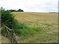 NZ1496 : Farmland near Linden Hill Head by Walter Baxter