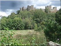 SO5074 : Ludlow Castle by Trevor Rickard