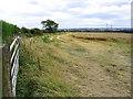 NZ0788 : Cornfield at Longwitton by Walter Baxter