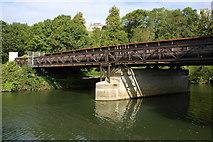 ST7065 : Park Railway Bridge over the River Avon by Philip Halling