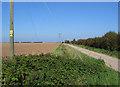 TF3997 : Farm Track East Of Grainthorpe by Stephen Horncastle