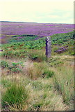 SK2775 : Guide Stoop in a valley on Big Moor by Roger Temple