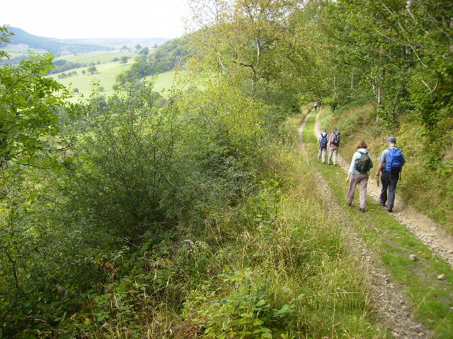 Track and bridleway in Riccal Dale at Hasty Bank