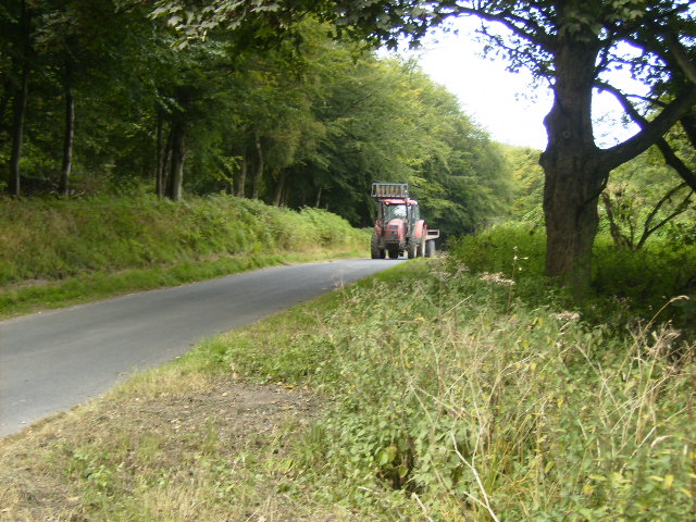 Lane leading to Bransdale north of Carlton