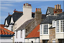 NT4999 : The Toft, Elie by Lisa Jarvis