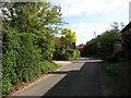 TG0136 : Sharrington Road in Bale by Evelyn Simak