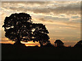 SJ9271 : Sun setting near Macclesfield in Cheshire by Roger  Kidd