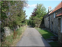 SE4712 : Lane at North Elmsall. by Bill Henderson