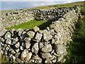 NX6389 : Sheepfold on Culmark Hill by Bob Peace