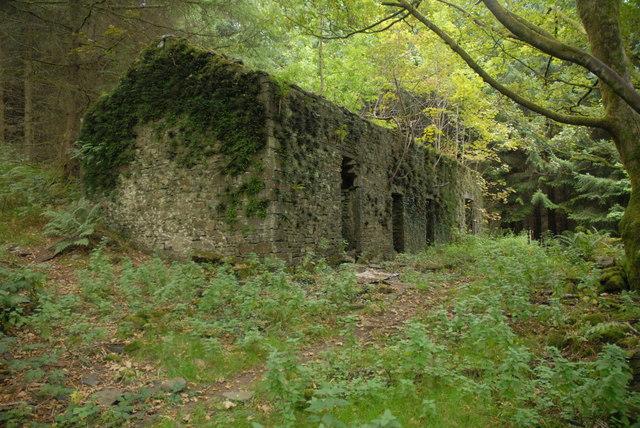 The ruins of Blaen-nant Meurig Farm