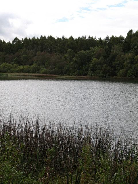 Lower Fish Pond