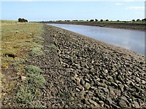 TF3839 : The River Witham, Cut End, Boston by Dave Hitchborne
