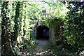 SX0854 : Tunnel under the railway line by Tony Atkin