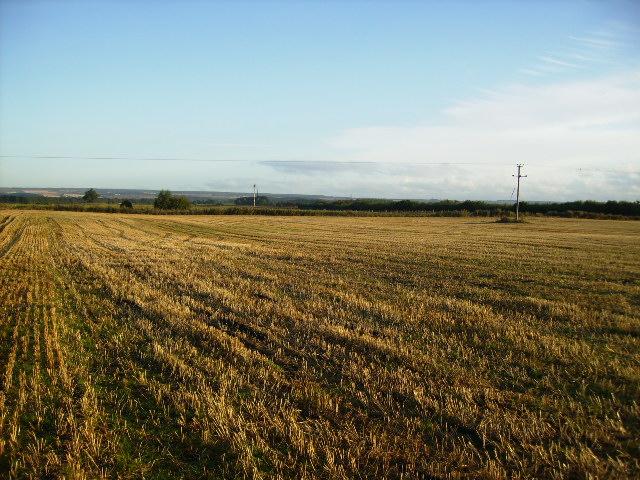 Stubble field on Sherburn Carr