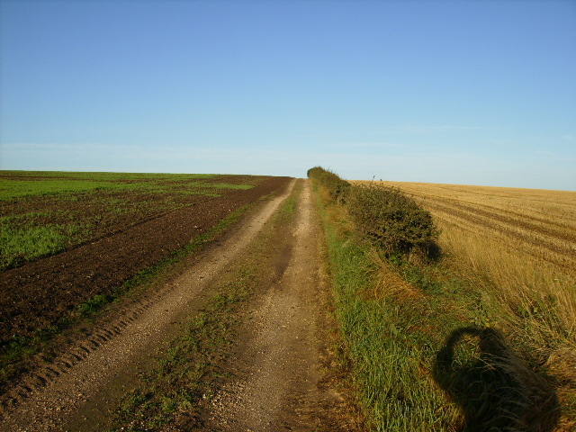 Farm track on the Wolds south of Burton Fleming