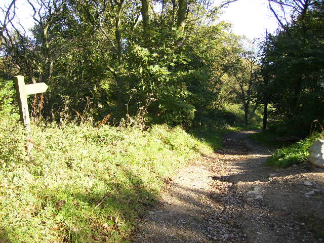 The Cleveland Way near Frank Cliff