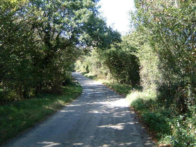Cardinham Downs lane