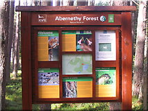 NH9718 : Abernethy Forest by M J Richardson