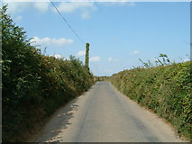 SW9544 : A lane, with a rather green telegraph pole by Gareth
