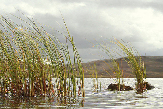 A duck's eye view of Loch an t-Sidhein