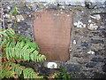 NX2472 : Linn's Tomb by Mark McKie