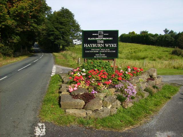 Tarmac Track down to the Hayburn Wyke Hotel