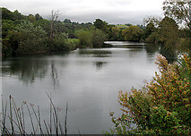ST7065 : The River Avon by Sharon Loxton