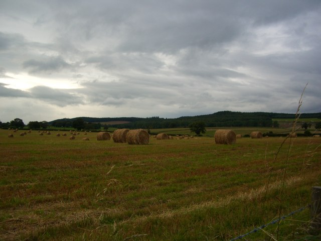 Farmland after haymaking