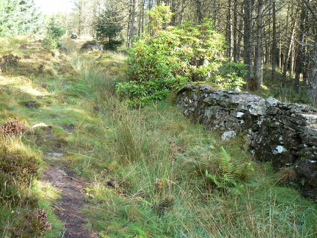 Dry stane dyke leading to Buachailean
