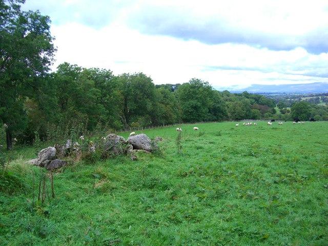 Limestone boulders in farmland