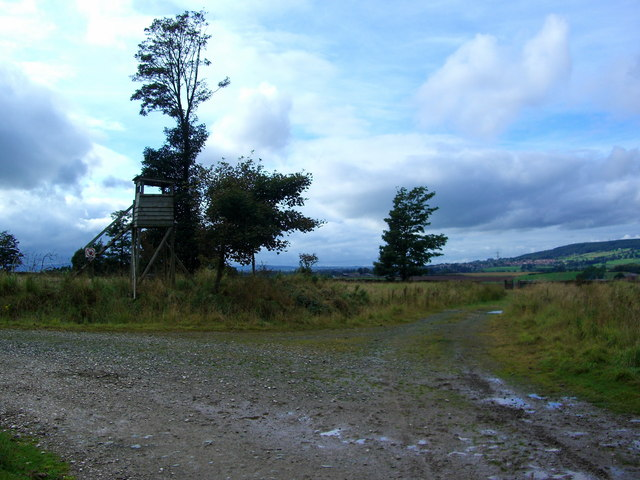 Junction of two forestry roads on the edge of Whinfell Forest