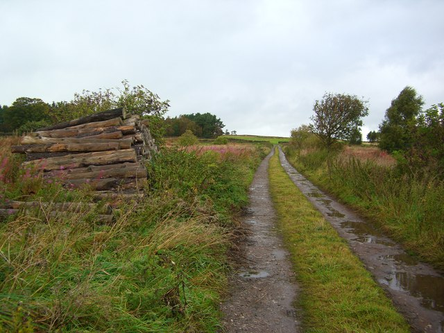Farm Track up to wood at Bowscar