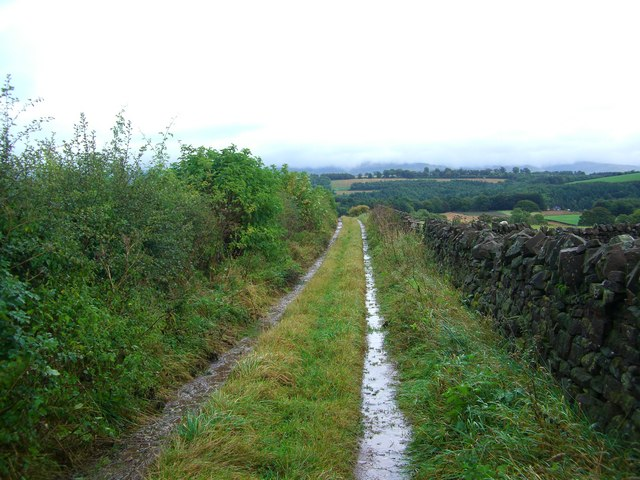Farm road to Eden Lacy
