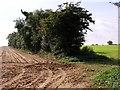 TL7297 : Farm fields by Lisa Wild
