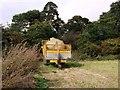 TL7397 : Buxton Plantation by Lisa Wild