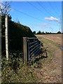 SJ4322 : Footpath under the pylons by Eirian Evans