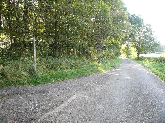 Bent Lane - Footpath