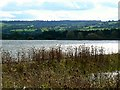 ST5659 : A view south across Chew Valley Lake, Somerset by Brian Robert Marshall