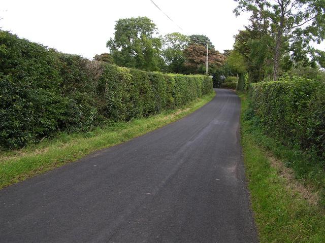 Road at Killard