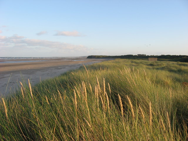 Marram grass and strand at Mosney, Co. Meath