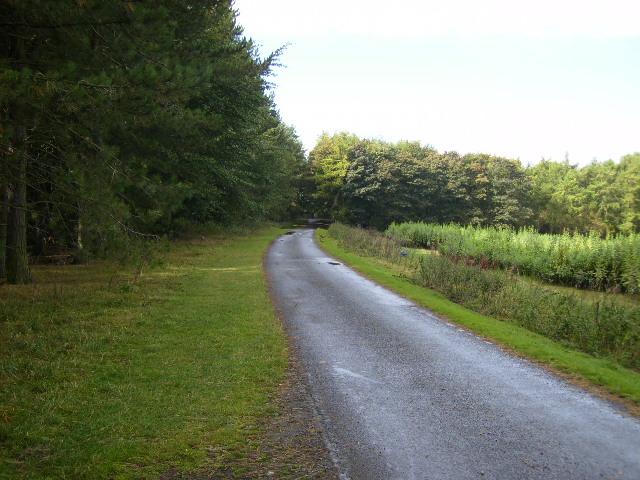 Track in Lambton Park west of The Grange