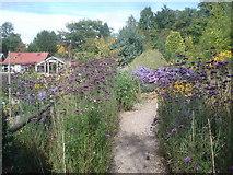 SO7542 : Old Court Nurseries and Picton Garden by Trevor Rickard