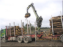 NY5584 : Loading logs for transportation by Walter Baxter