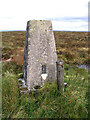 NY5686 : Glendhu Hill trig point by Walter Baxter