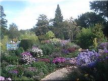 SO7542 : Picton Garden by Trevor Rickard