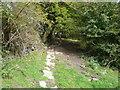 SK3463 : Footpath - View towards Cripton Lane by Alan Heardman