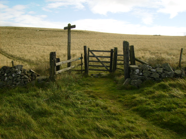 Border gate on St Cuthbert's Way