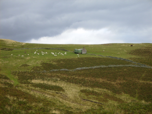 Steading with lorry container on Tom's Knowe