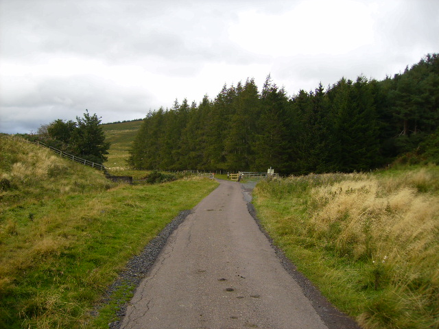 Track to Elsdonburn west of Hethpool